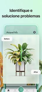 PictureThis Identificar Planta para PC
