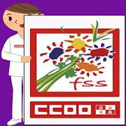 FSS - CCOO CYL PC