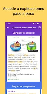 Socratic de Google PC