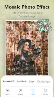 Mosaic Photo Effect : Photo Editor & Photo Collage الحاسوب